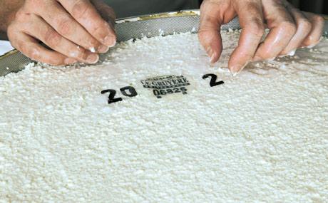 Sobald der Bruch in die Formen geschöpft ist, wird obenauf eine Erkennungsmarke aus Kasein gelegt. So kann man den Käse jederzeit identifizieren. Danach kommt der Käse ins Salzbad.
