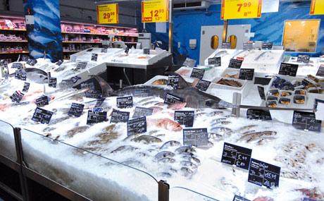Frisch-Fisch (Foto) und TK-Fisch liegen jetzt nebeneinander.