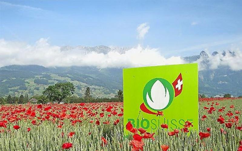 Aldi / Lidl / Schweiz : Verlangen nach dem Bio-Siegel