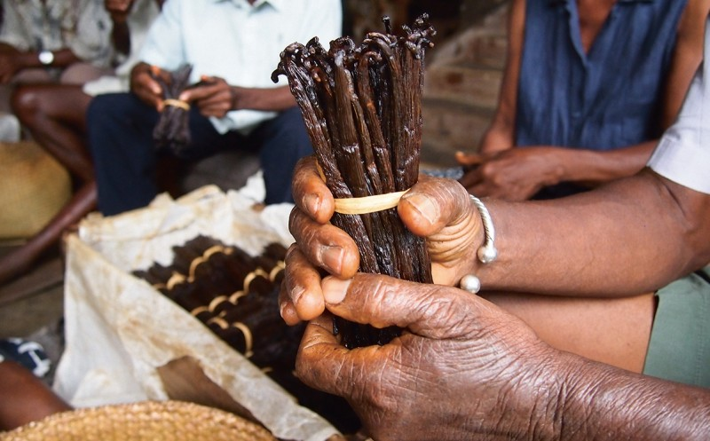 Symrise und Kellogg Company: Nachhaltige Vanille aus Madagaskar
