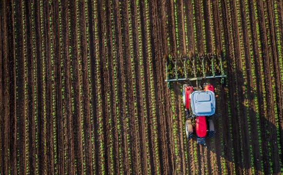 Bayer/Monsanto: Übernahme bis 2018