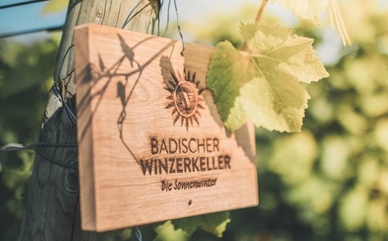 Badischer Winzerkeller: Umsatz erneut gesteigert