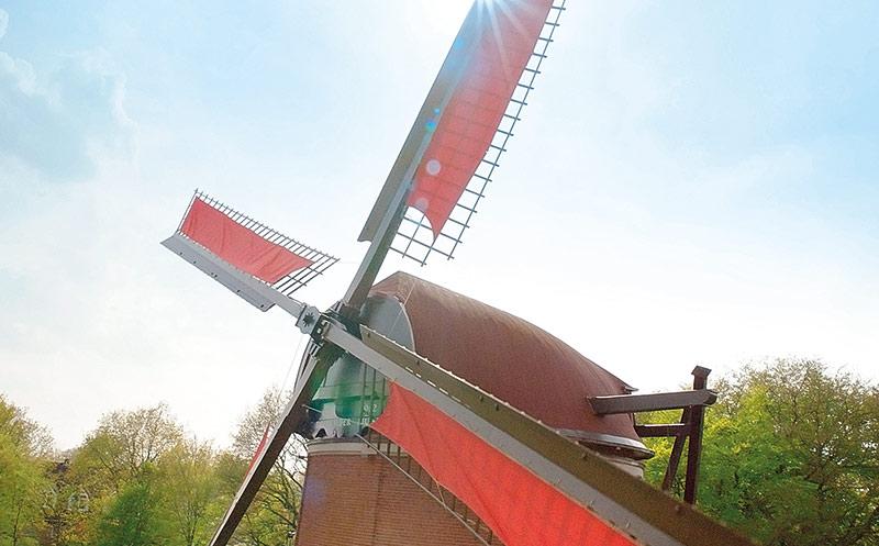 Rügenwalder Mühle: Rekordjahr dank Veggie-Produktlinie